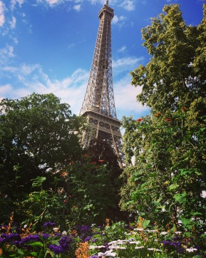 View of the Eiffel Tower from a nearby garden